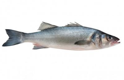 Fish seasoning